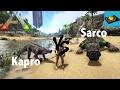 Ark Insight -- Kaprosuchus V.S Sarcosuchus