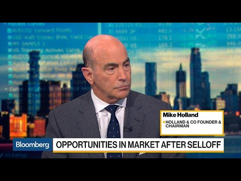 'Never Been a Fan of Stock Buybacks,' Holland Says