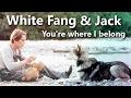 watch he video of [White Fang] White Fang & Jack || You're Where I Belong