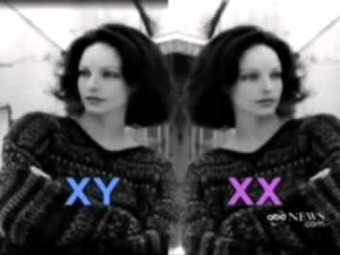 XY Female