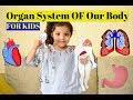 Organ System For kids|Important Vital Organs for Kids|Body Systems for Kids |How our Body Works