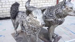 Чукотская ездовая собака