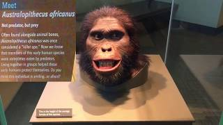 Smithsonian National Museum of Natural History in Washington DC