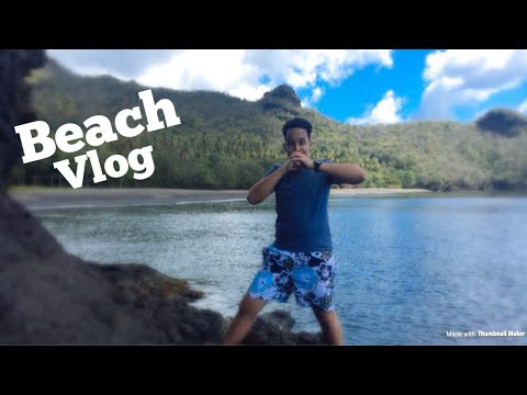 Mt. Wynne Beach Vlog!! || St. Vincent & the Grenadines