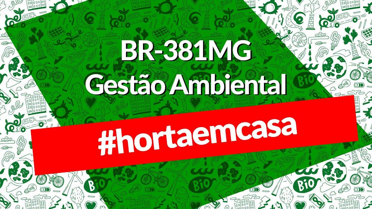 BR 381MG - Gestão Ambiental - Fazendo uma hortinha caseira!