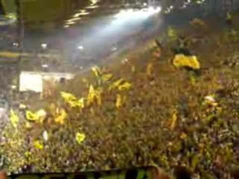 "BVB  - You""ll never walk alone"