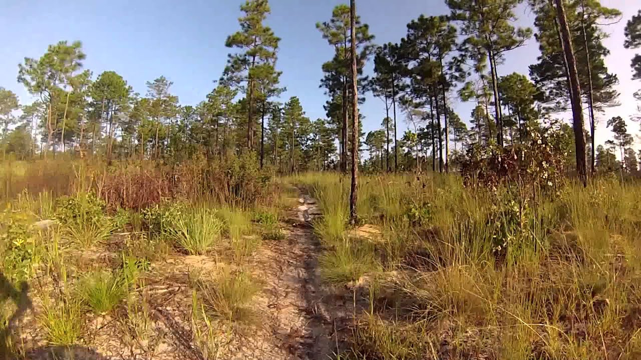 Paisley Woods Mountain Bike Trails Youtube