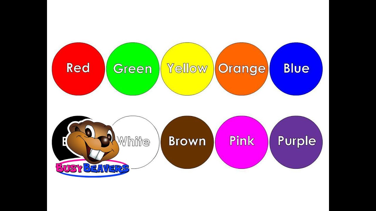 The Color Song Level 1 English Lesson 15 Clip