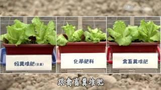 大地耕耘者 蚯蚓(陳仁炫)