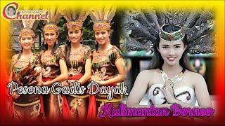 Pesona Gadis Dayak Kalimantan Borneo