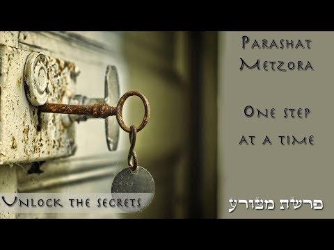Parashat Metzora - One step at a time - Rabbi Alon Anava