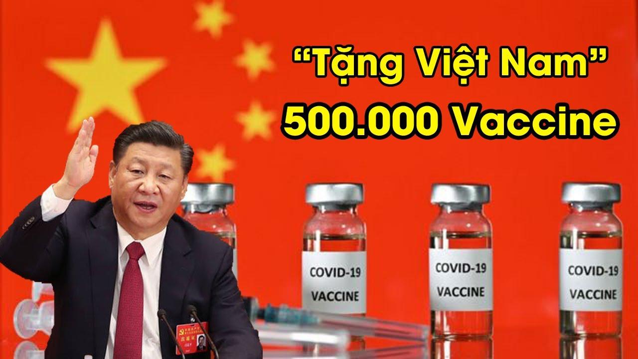 Liệu có âm mưu gì khi TQ tặng Việt Nam 500.000 Liều Vắc xin covid 19 ?