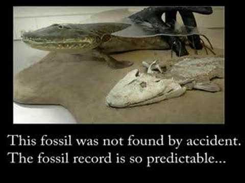 Proof of Evolution - Part 3 (Atavisms and Fossils)