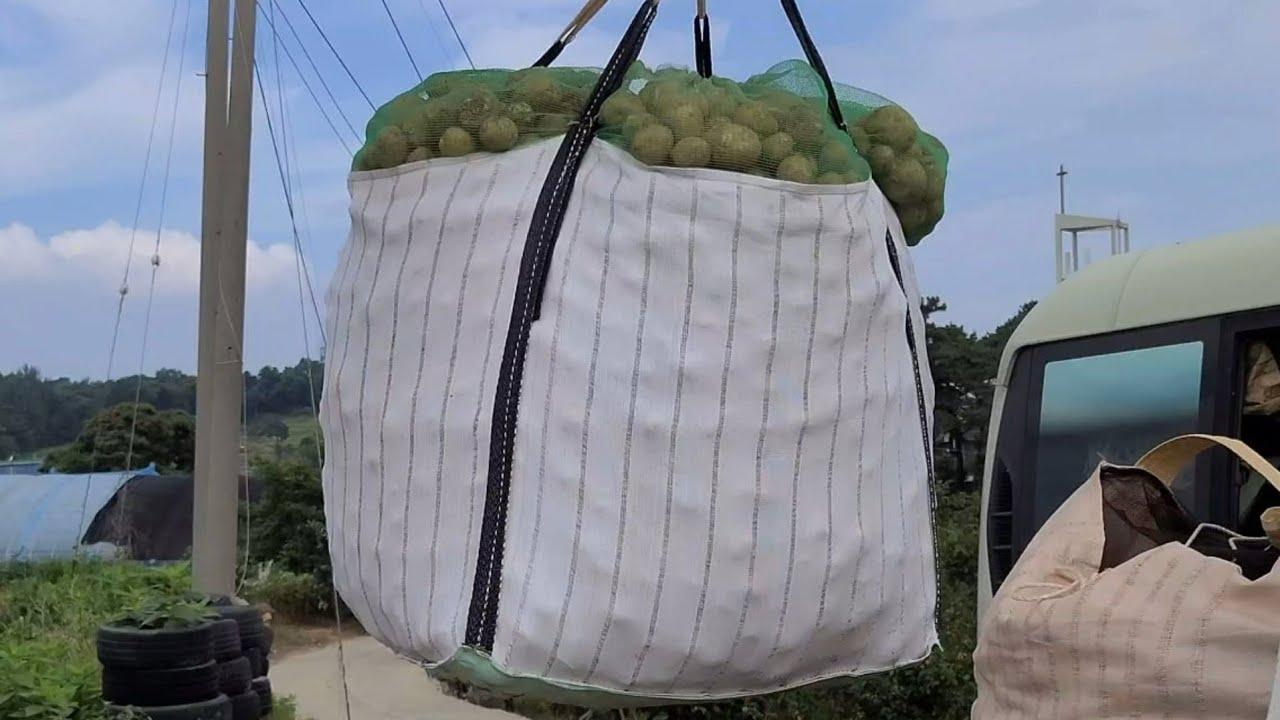 두백감자 나눔 3회차 택배 완료~  7월8일 10kg씩 100 명 시작~