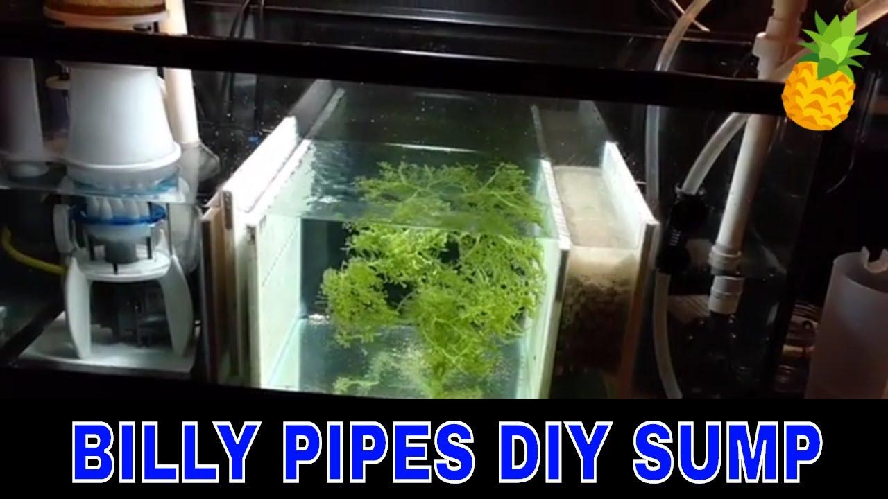 diy sump 30 gallon