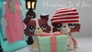 Christmas In A Box | Lps Christmas Special #1