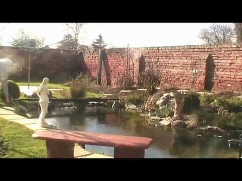 Barley Straw Extract Put To The Test In My Pond
