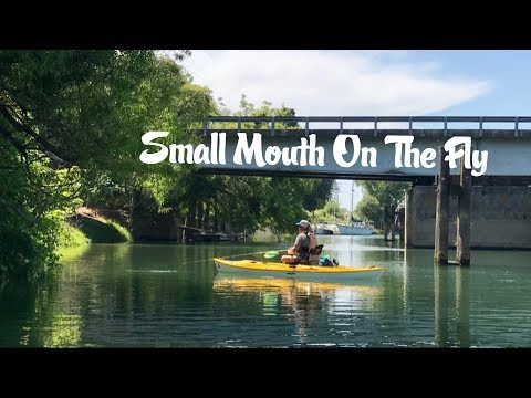 Small Mouth On The Fly: North Delta With Bill And Josh