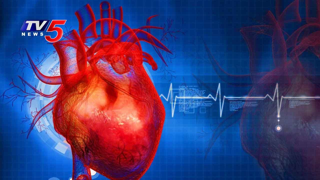 Types Of Heart Diseases Causes Symptoms Treatments