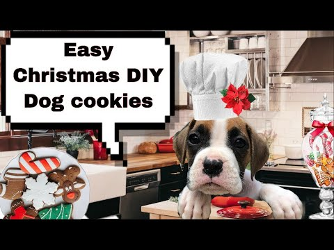 How to make dog treats 🐾🎄CHRISTMAS dog gift ideas 🐾🎄Holiday dog treats DIY cookies for dogs