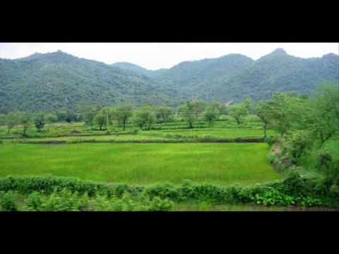 India Orissa Orissa Nature & Wildlife Package Holidays Travel Guide Travel To Care