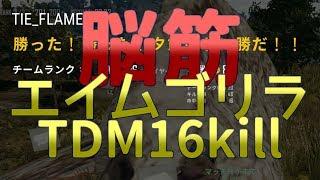 【PUBG】TDMモード16killwin   with TIE_Ru