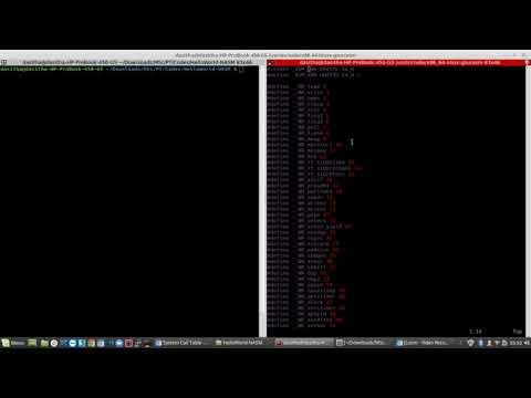 Netwide Assembler NASM language Hello World application