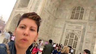 Video in groppa all'ELEFANTE e...tante EMOZIONI! VLOG INDIA parte 2 download MP3, 3GP, MP4, WEBM, AVI, FLV Januari 2018