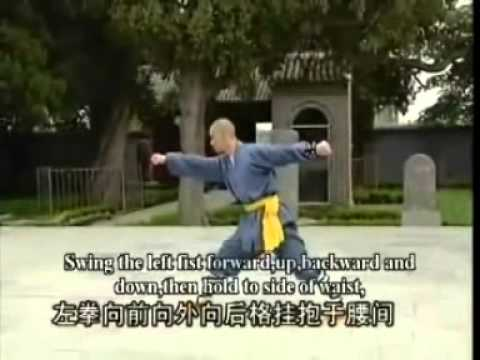 8 Step Linked Circles Ba Bu Lian Huan Kung fu