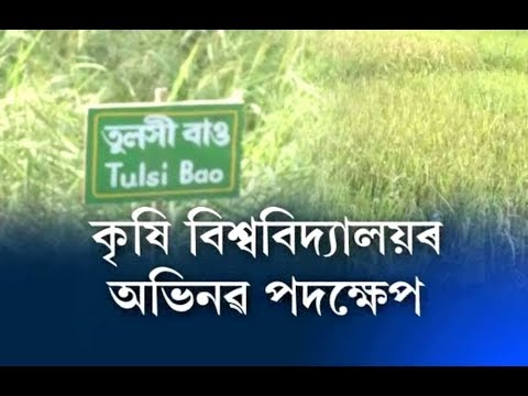 A noble initiative of Agricultural University