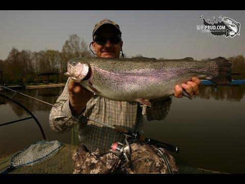 Vip-prud.com Платная рыбалка в Подмосковье.Ловля форели.Рыбалка на платном водоёме.