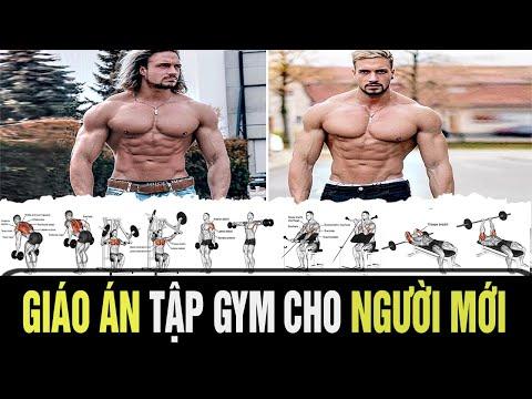 Lịch Tập Gym TĂNG CƠ TĂNG CÂN Cho Người Mới Bắt Đầu | Full Week Workout Plan