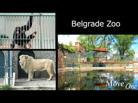 Living in Belgrade: Kids Activities