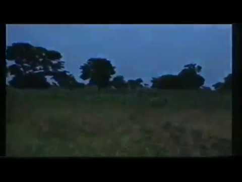 Download Wakar film din  Gyale (Tuna baya)