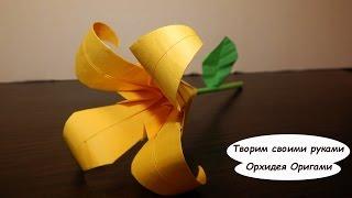 Оригами цветы - орхидея. Оригами из бумаги видео схема.  Origami Flower(Обзоры игрушек - https://goo.gl/b3Npj0 Наш канал- https://goo.gl/DQaqec Шпилим - https://www.youtube.com/user/LinkoMclaren Деревянная игрушка -..., 2015-05-23T07:30:00.000Z)