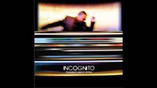 Incognito - Life Ain