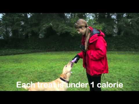 leanlix-low-calorie-treats-and-training-aids---low-calorie-healthy-treat