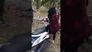 Ketauan Pasangan Hijab Mesum Di Kebun Sawit Bareng pacar