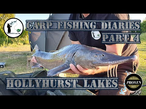 Carp Fishing Diaries Part 4 24hrs At Hollyhurst Lakes
