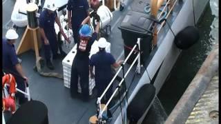 Sea Turtle Release Galveston, Texas