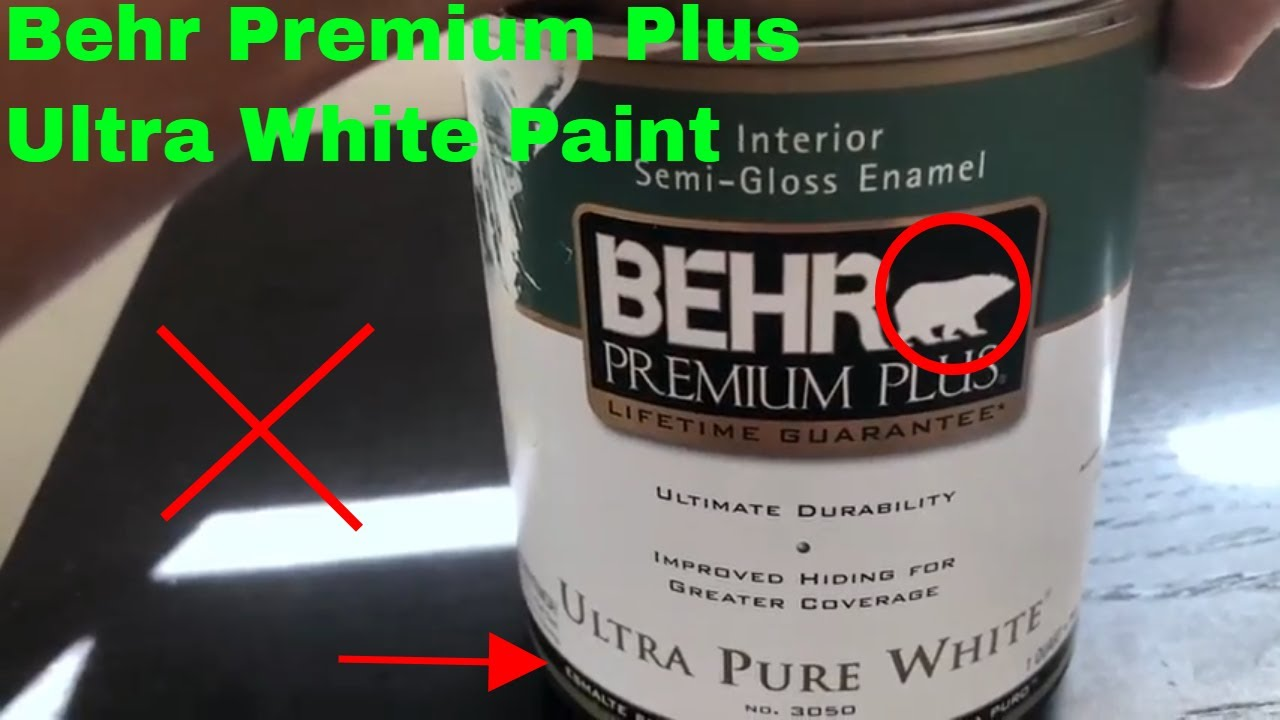 How To Use Behr Premium Plus Ultra White Paint Review