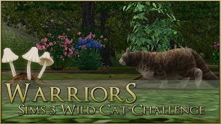 Journey of the Many Clanless Cats 🌿 Warrior Cats Sims 3 Legacy - Episode #4