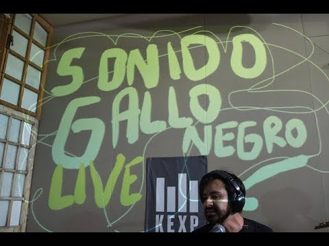 Sonido Gallo Negro - Full Performance (Live on KEXP)