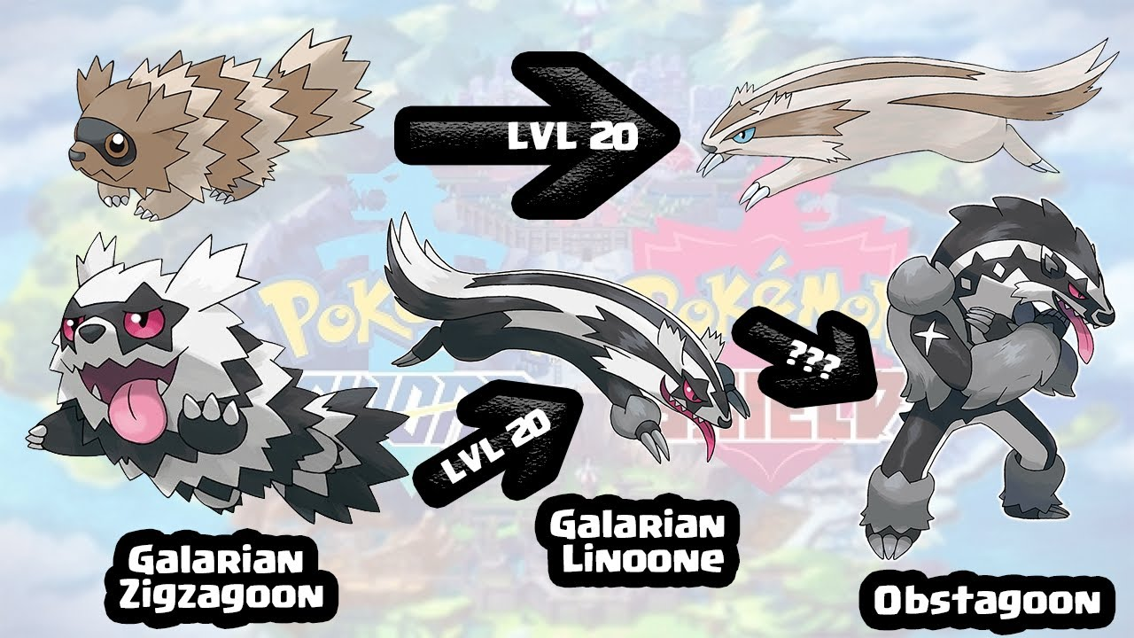 Brand New Zigzagoon Evolution!!! Obstagoon!!! - YouTube