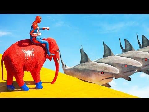 GTA 5 Funny Ragdolls Spiderman Elephant On Shark Bridge Parkour Jumps/Fails (GTA 5 Euphoria physics)