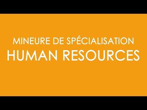 BBA4 - Présentation de la mineure Human Resources
