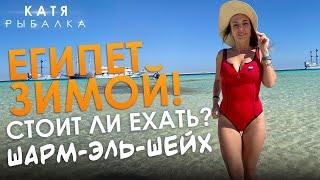 ЕГИПЕТ ЗИМОЙ Vlog Катя Рыбалка ШАРМ ЭЛЬ ШЕЙХ СТОИТ ЛИ ЕХАТЬ Отель Reef Oasis Blue bay ВЛОГ