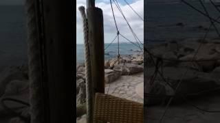 بالفيديو والصور.. حورية فرغلي في تونس وتعود بعد أيام لاستكمال «طلق صناعي»