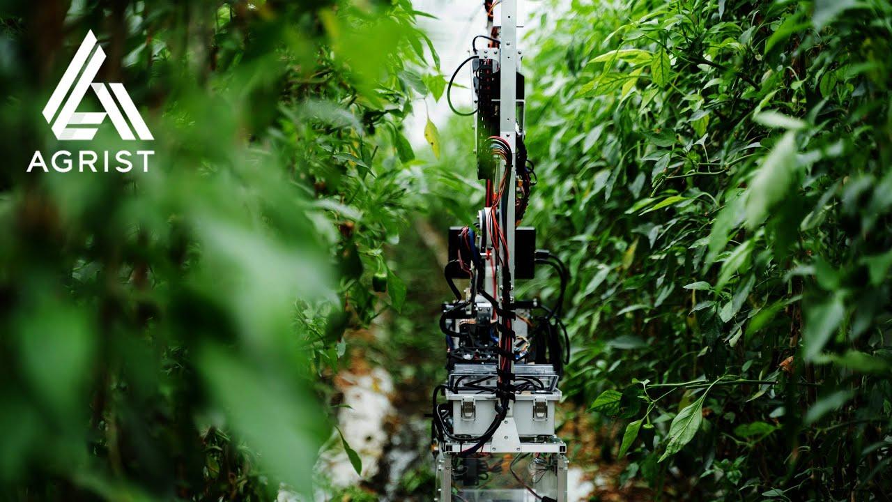 農業ロボットで課題解決するAGRIST株式会社