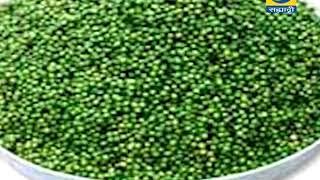 Krishidarshan 14 May 2018 - मसाला पिक लागवड